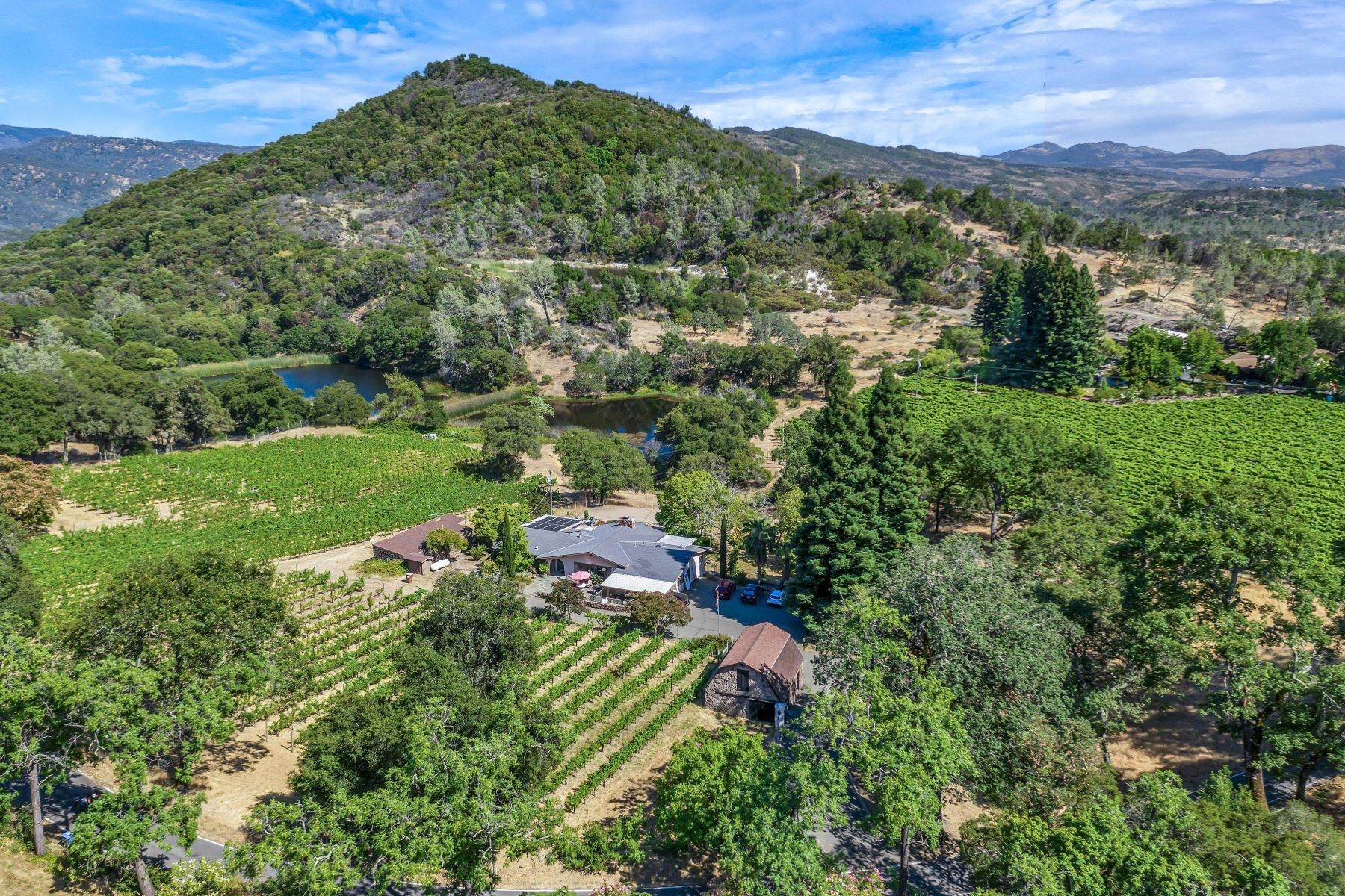 Single Family Homes for Sale at Ultra-Premium Vineyard & Country Estate 4080 Atlas Peak Road Napa, California 94558 United States